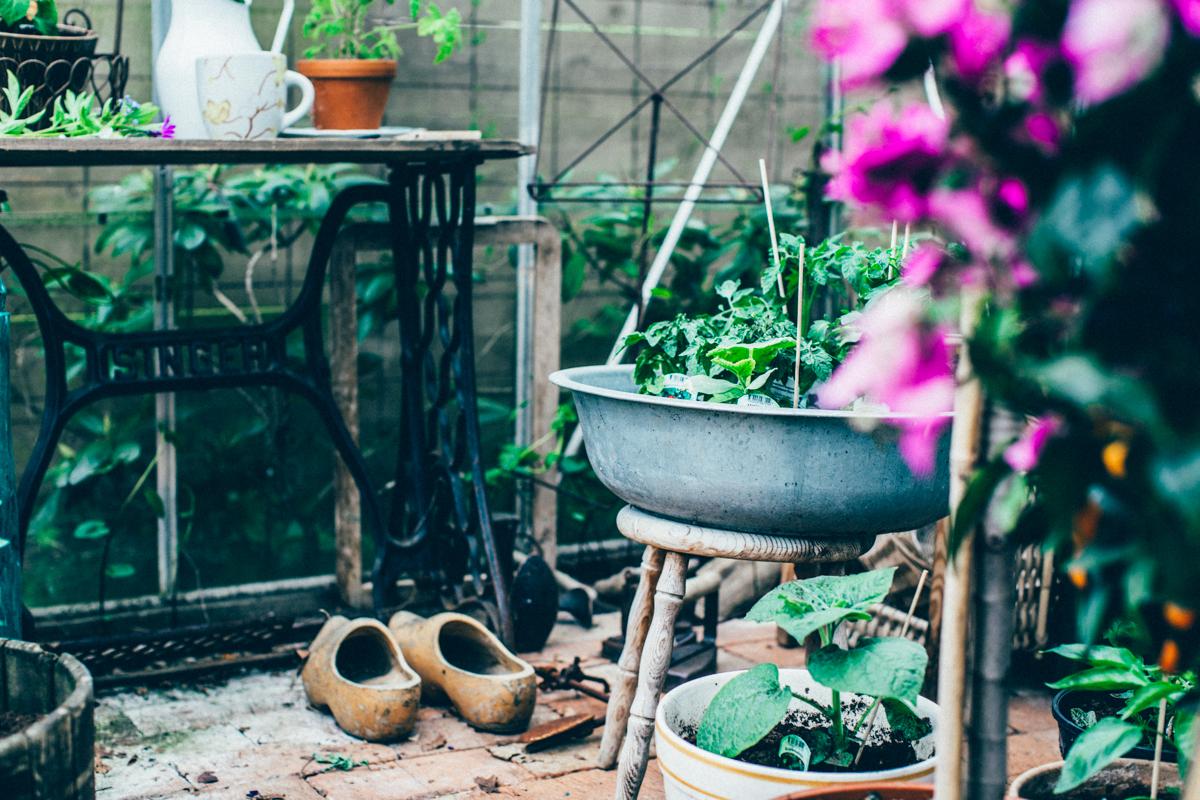 garden_kristin lagerqvist-2544