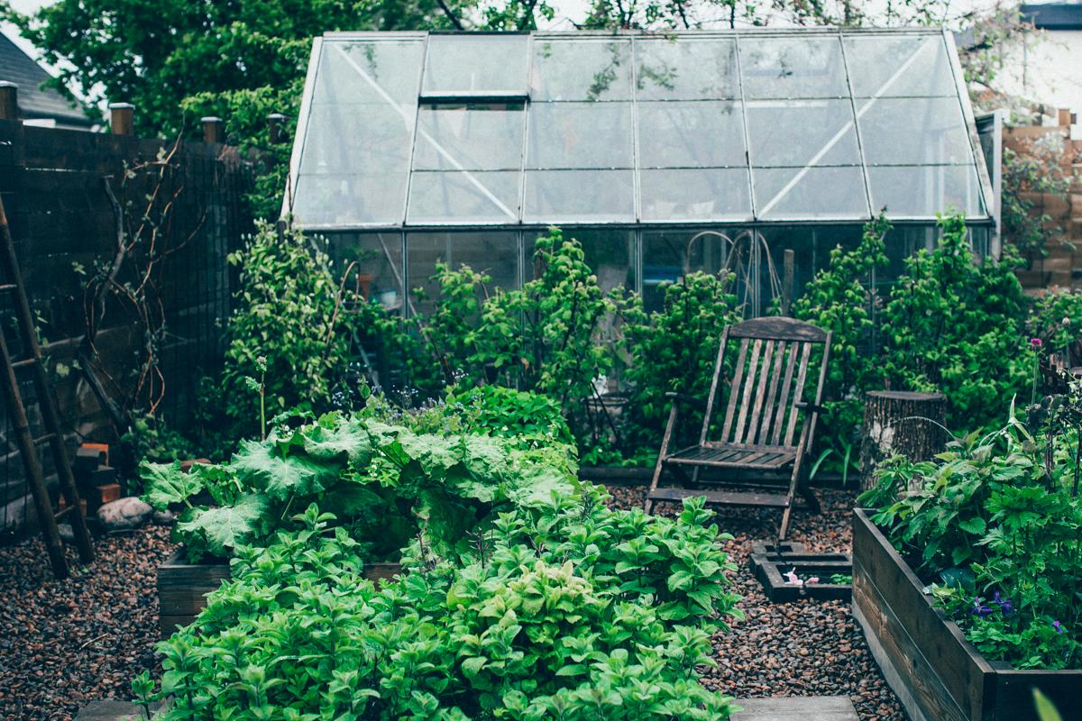 gardening_kristin lagerqvist-3084