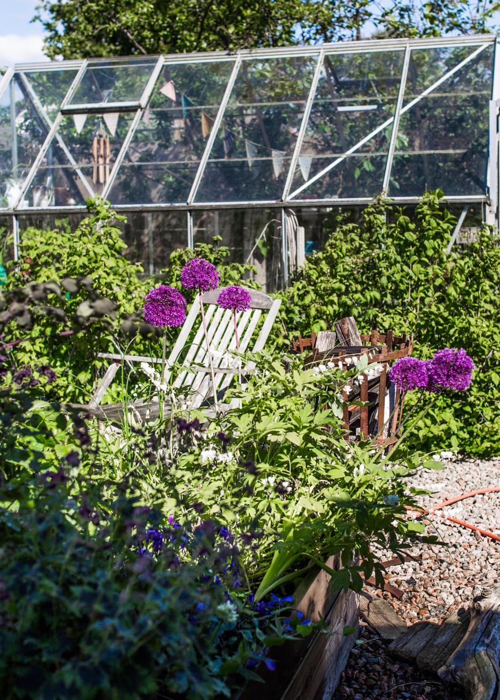garden cup_kristin lagerqvist-3844