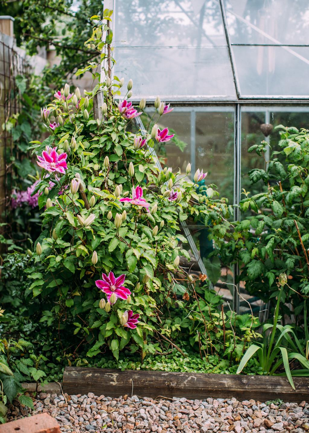 garden_kristin lagerqvist-4191