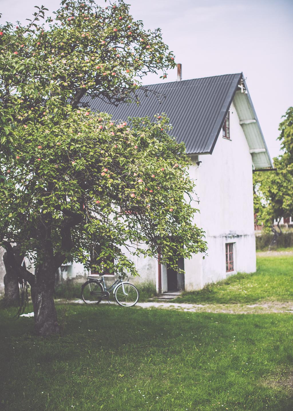 etelhem_kristin lagerqvist-0152