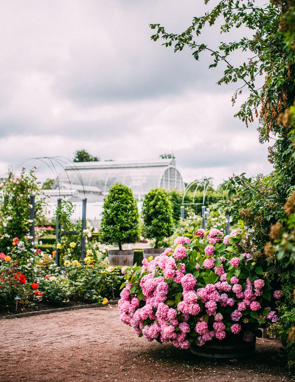garden2_kristin lagerqvist-8232