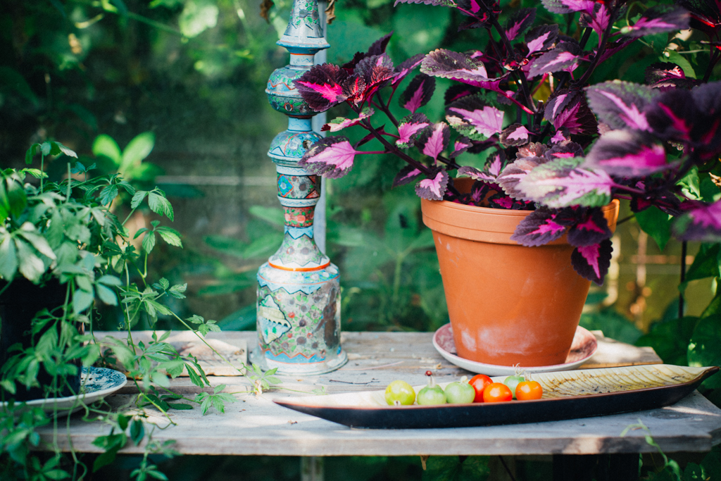 garden_landet_kristin lagerqvist-9387