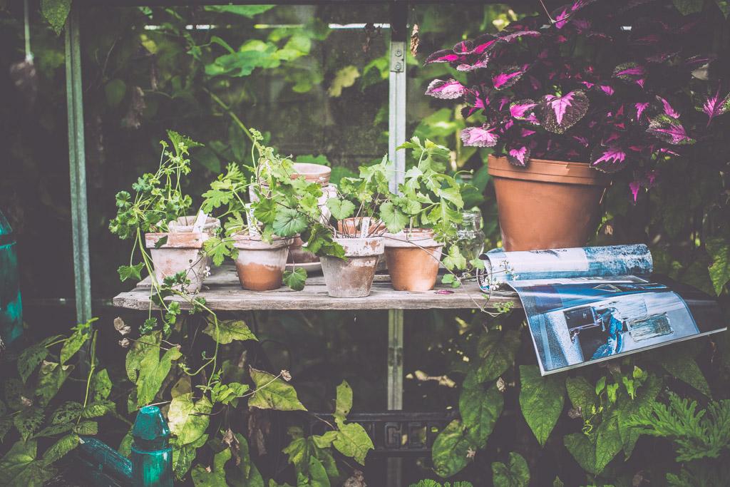 gardenhouse_kristin lagerqvist-0256