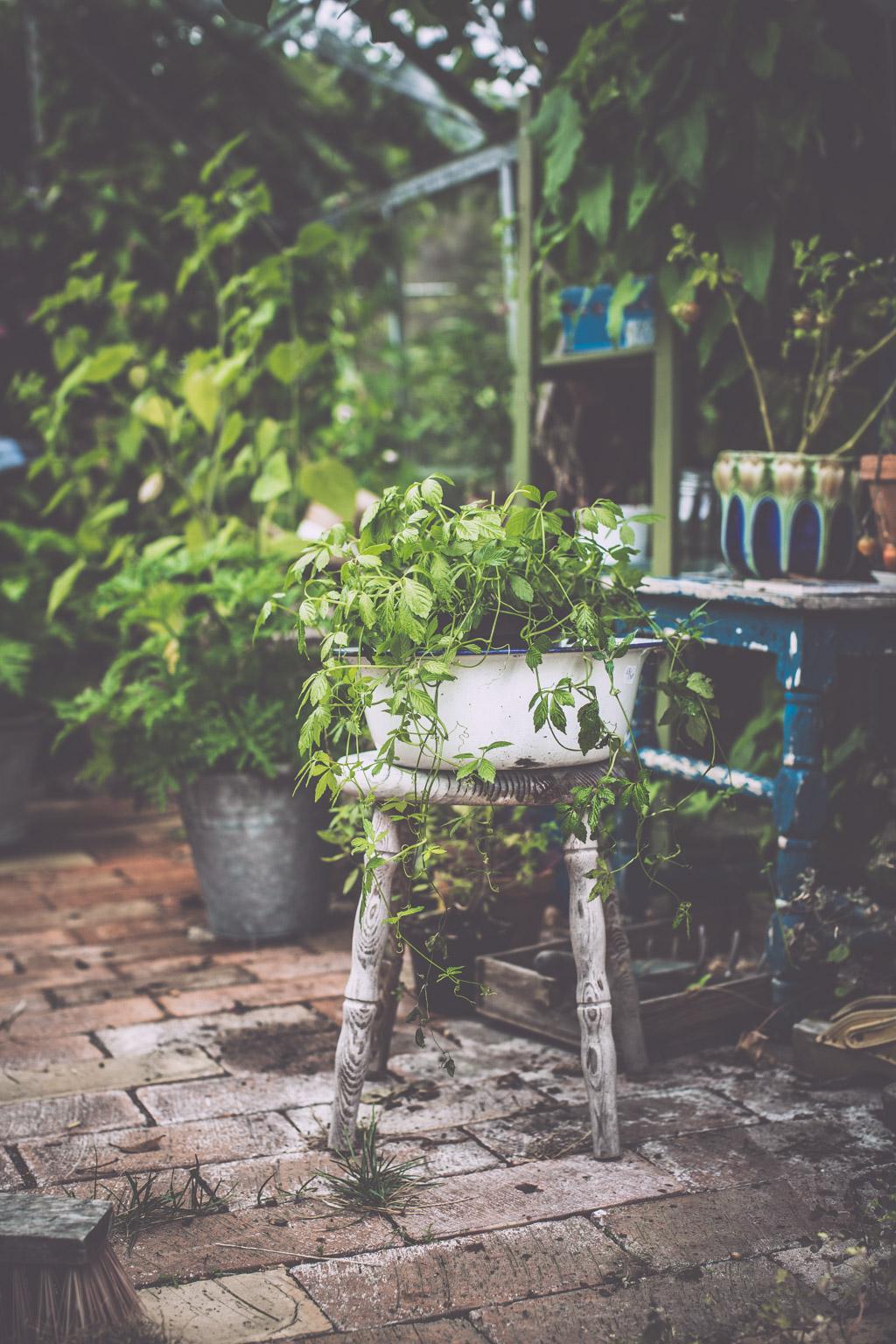 gardenhouse_kristin lagerqvist-0260