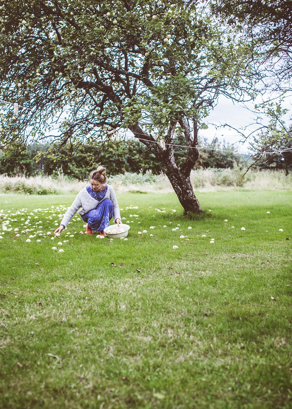 Lovelylife_apples_krickelin-8331-1