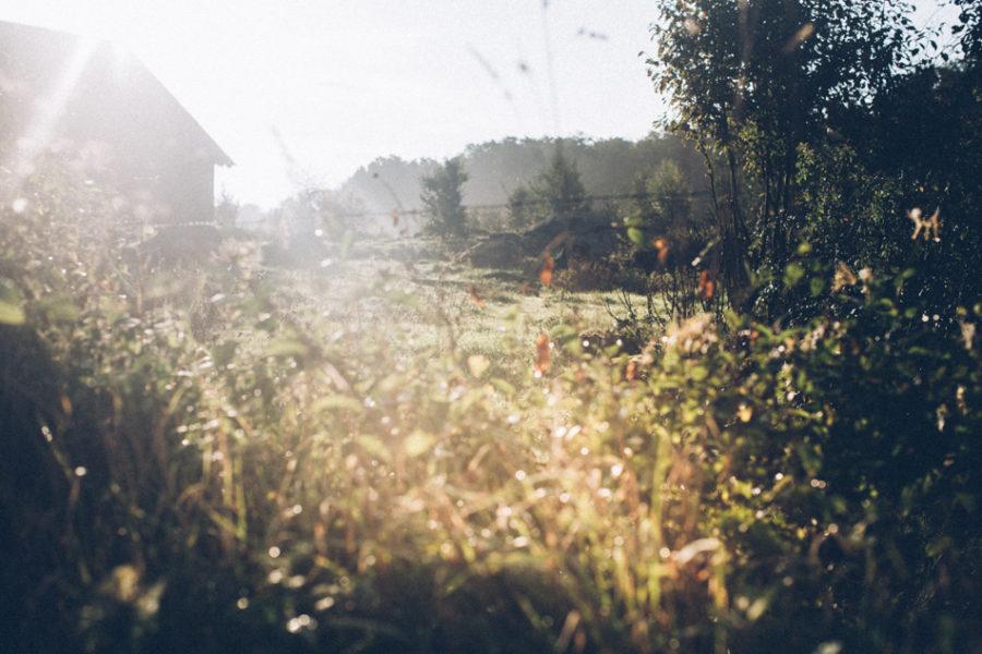 tekla_Kristin_lagerqvist-9056