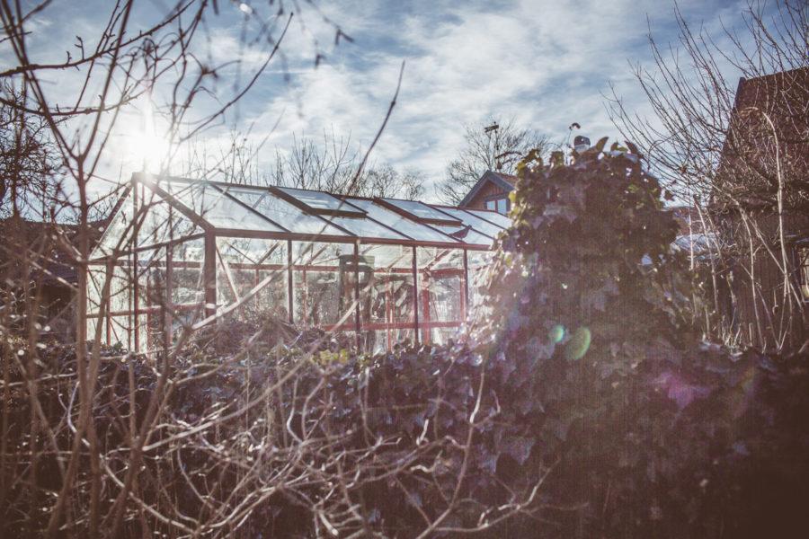 garden_Kristin_lagerqvist-4795