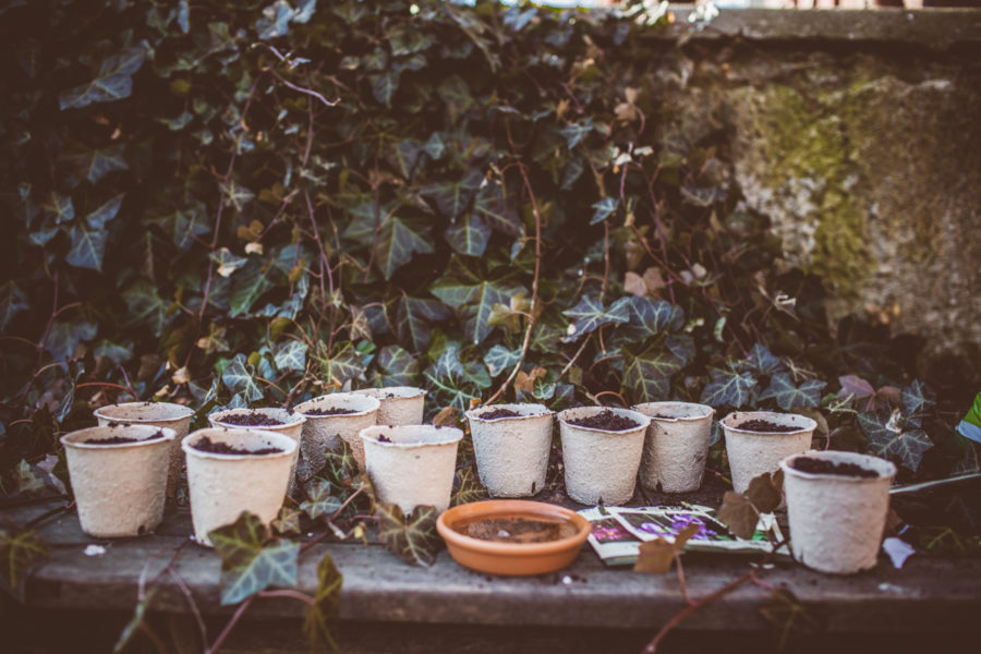 garden_Kristin_lagerqvist-4797