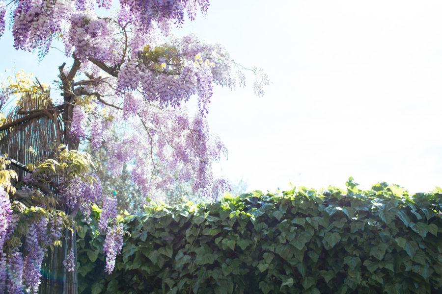 florens_kristin Lagerqvist-5978
