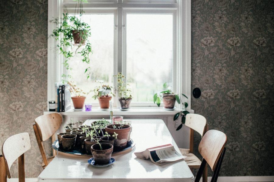 morning_Lagerqvist-