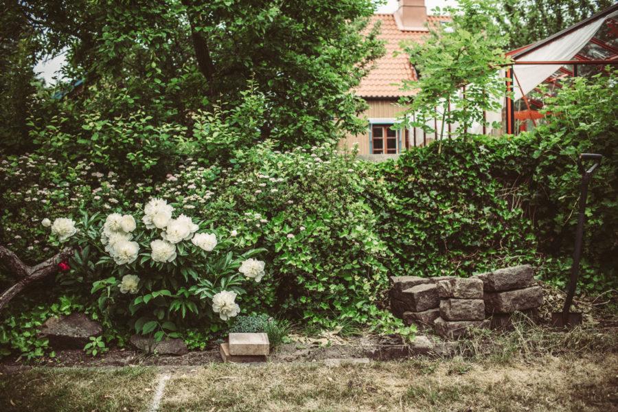 flowers__Lagerqvist-0163