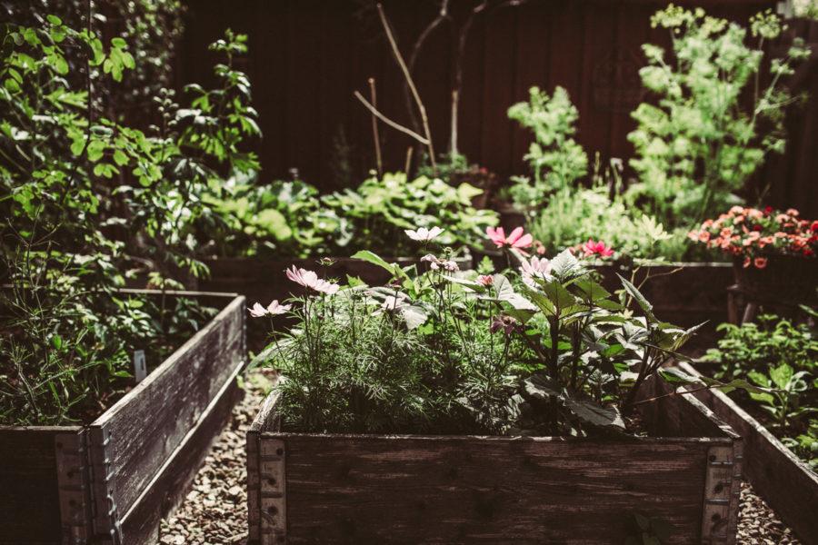 garden prints__Lagerqvist-0499