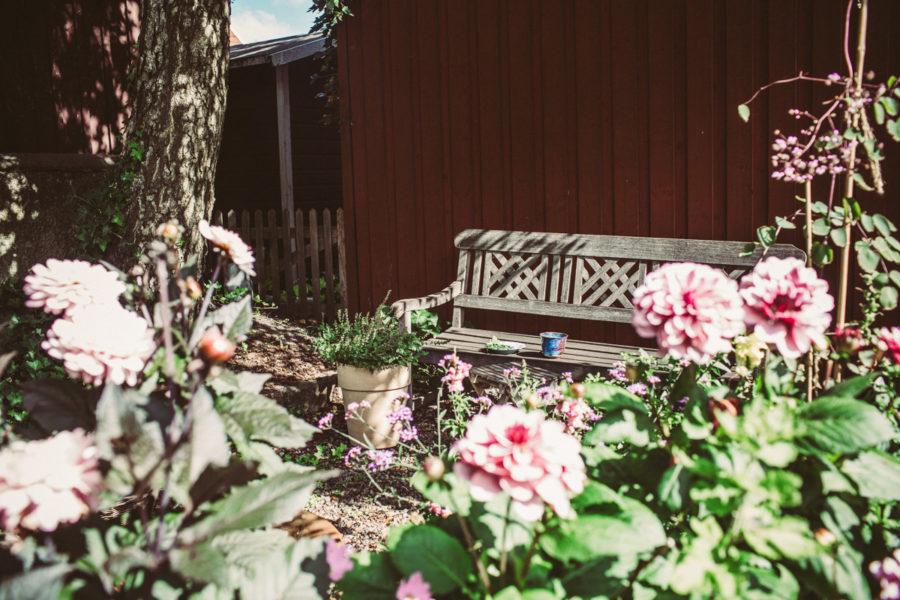 garden_Kristin__Lagerqvist-3509