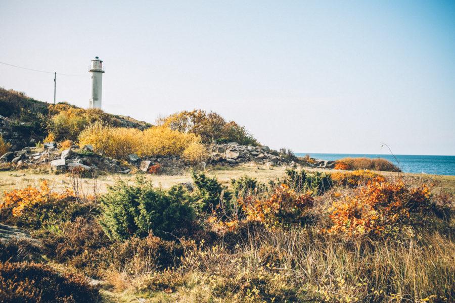 autumn_kristin_Lagerqvist-5