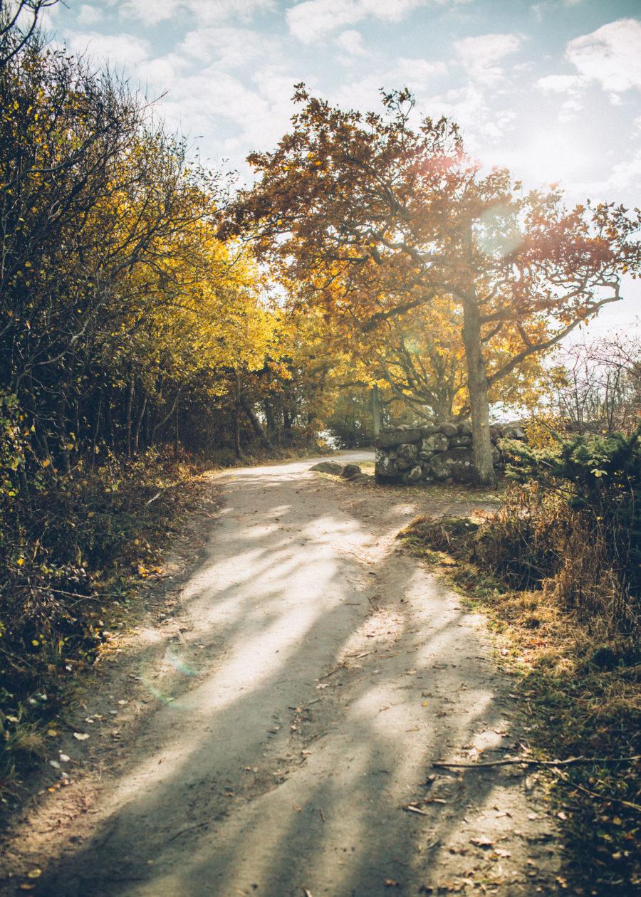 autumn_kristin_Lagerqvist