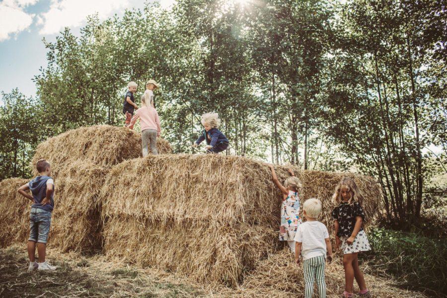 farmers market_mat_kristin_Lagerqvist-17