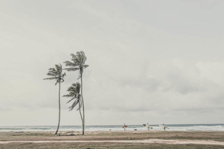 Ceylon Sliders-0W2A4672