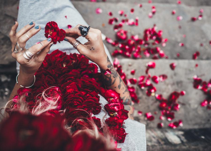 roses_Kristin_Lagerqvist-4