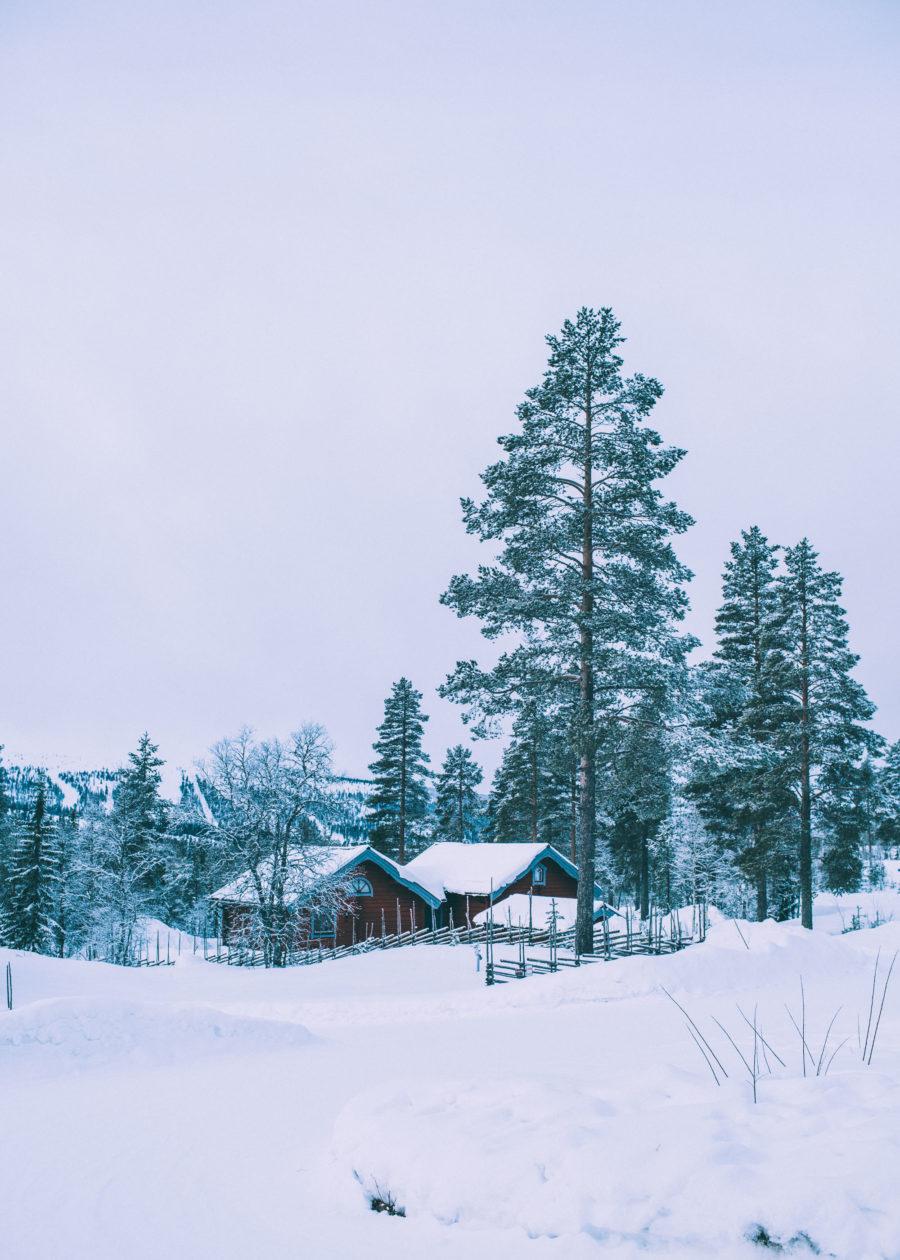 ski_Kristin_Lagerqvist-8